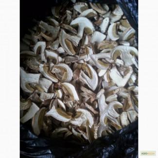 Продам сухие белые грибы сорт экстра и первый