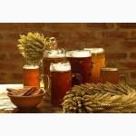 Поставка ячменя пивоваренного