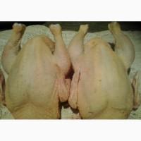 Охлажденное мясо бройлерных цыплят, кур, уток и гусей