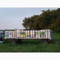 Продаю прицеп (пчелоплатформа), будка (вагон-бытовка), ульи, медогонка, рамки и прочее
