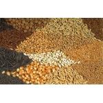 Семена трав, зернобобовых и картофеля
