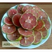 Продам красной лимона USDA ORGANIC
