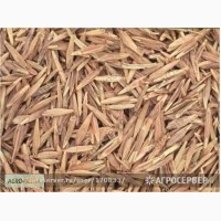 Продам: Семена костреца Моршанский 760