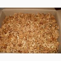Продаём грецкий орех очищенный крупным оптом