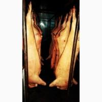 Мясо Свинины 2 категории