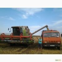 Зерноуборочный комбайн фирмы Glaas Доминатор-204