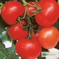 Семена томата Махитос F1