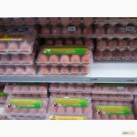 Яйца куриные оптом со склада в Москве
