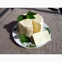 Продам Козий сыр (Брынза)