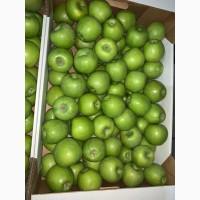 Продаем яблоки оптом