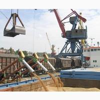 Пшеница 3 класса на экспорт