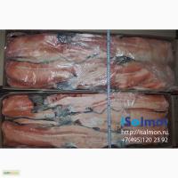 Хребты лосося (семги)