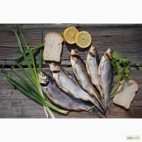 Речная рыба оптом, сертификаты, отличный вкус и качество