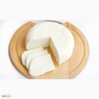 Продам сыр, домашний - брынза, из цельного молока