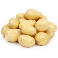 Закупаем Картофель мытый белый на постоянной основе