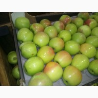 Яблоки оптом от 43 р/кг