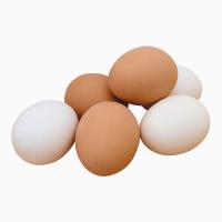 Продам яйцо куриное С2, С1, С0