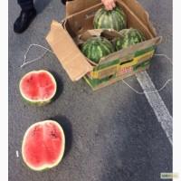 Продам арбузы. Казахстан