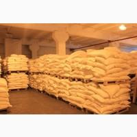 Мука пшеничная ОПТОМ со склада производителя