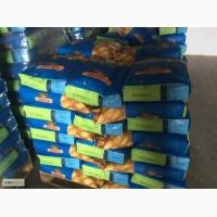 Семена кукурузы Монсанто ДКС 4014 ФАО - 340