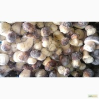 Продам белые грибы мороженные