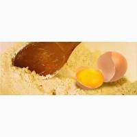 Яичный желток ферментированный (термостабильный)