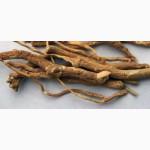 Продам корень аралии (сухой, рубленный).Оптом