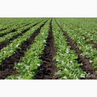 Гербициды по зерновым