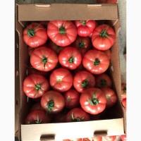 Розовые помидоры оптом