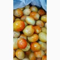 Соленые огурцы, помидоры квашенная капуста оптом