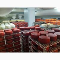 Продажа Сыра Производства Испания
