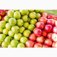 Яблоко от производителя