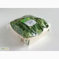 Лоток- подложка из шпона для фасовки салатов