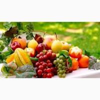 Зелень овощи фрукты
