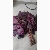 Продаю зелень из Армени