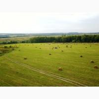 Продаём сено вика-овёс и травосмеси в рулонах 2017 года