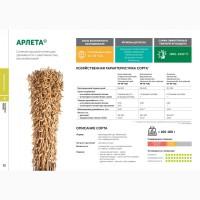 Cемена сорта сои АРЛЕТА селекции Компании Соевый комплекс