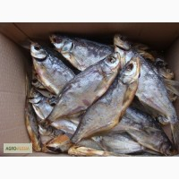 Рыба вяленая сопа
