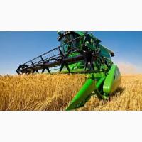 Продаем пшеницу III, IV, V класса