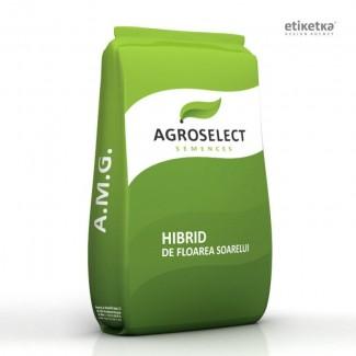 Семена подсолнечника A.M.G.AGROSELECT SEMENCES