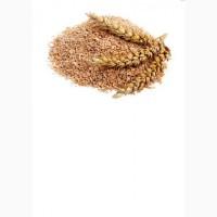 Корм на основе пшеничных отрубей