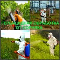Обработка гербицидами от сорняков. Уничтожение сорняков