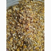 Кукуруза дробленка