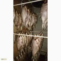 Цимлянская вяленая рыба