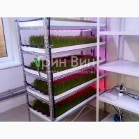 Гидропонная установка для выращивания зеленого корма