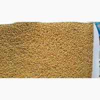 Предлагаем на экспорт горчицу белую (Sinapis Alba)