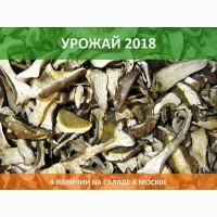 Сушеный белый гриб, 3 сорт, в наличии в Москве, Урожай 2018