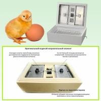 Бытовой электрический инкубатор для цыплят и гусят на 45 яиц Золушка 220/12