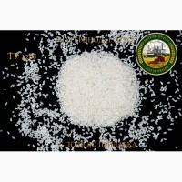 Рис высший сорт, рис для суши, ГОСТ, ТУ, Камолино, Дробь оптом от производителя