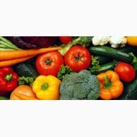Выращивание овощей на заказ сезон 2020
